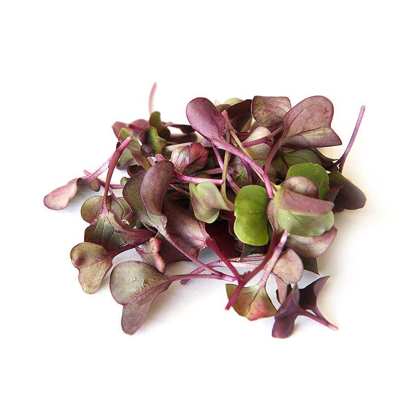 Sakura - Zioła cięte, warzywa, grzyby, owoce egzotyczne i przyprawy Freshmint Łódź