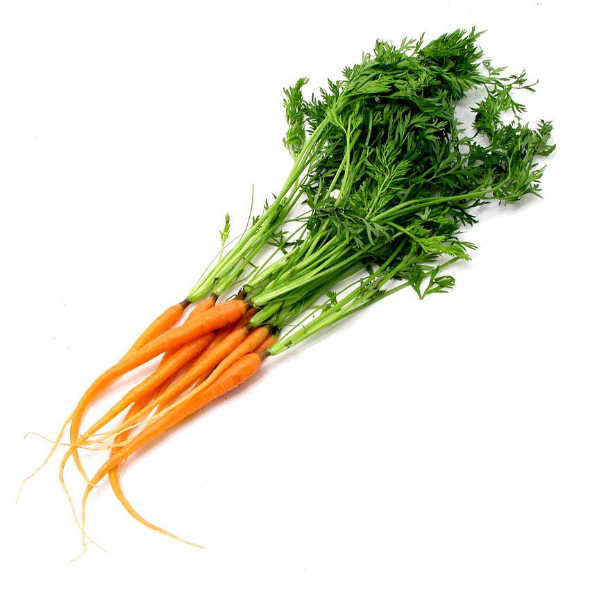 Marchew mini z nacią - Zioła cięte, warzywa, grzyby, owoce egzotyczne i przyprawy Freshmint Łódź